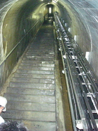 80mの階段。脇にはケーブルの束。