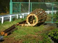 道端にあった木製のオブジェ