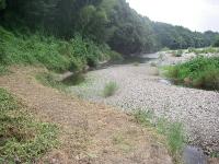 去年の川道は干上がった都幾川