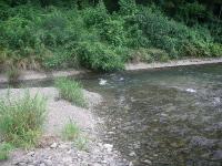 川の方向が変わったところに流れの止まった領域