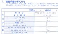 ALTは27、γ-GTPは62、グリコアルブミンは14.7