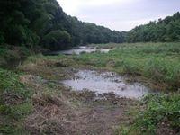 水面にアプローチできる手前の水路は流れがほとんどない