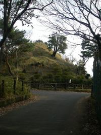 南から見た荒幡富士