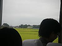 車中から田んぼの向こうに見えた圃場。青い防風ネットが目印。