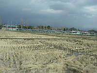 農地の中に並ぶ太陽光パネル