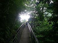 滝川の対岸に設けられた幅1メートルほどの遊歩道。両側に手すり。