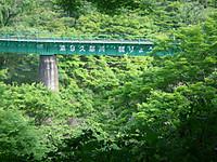 木々の緑の間に見える水郡線の鉄橋(緑色)