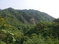 探鳥路の途中で久慈川対岸の山を望むと緑の中に岩肌を見せた絶壁が見える。