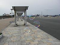 海べりの広場を漂う巨大なしゃぼん玉