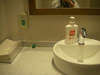 洗面台の鏡の下にある非常用呼び出しボタンからは先に飾り玉のついた長さ20センチメートルほどのヒモも垂れている