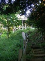 展望台へ続く急な上りの階段道