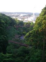 展望台から見下ろすと大小2つの吊り橋と円内を一望できる