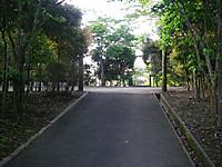 坂道を登り切ると入口広場へ
