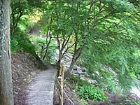谷へ降りる道。幅は60センチメートルほどでセメントで舗装されていて谷側にはロープが張ってある。木々の向こうに滝が見える。