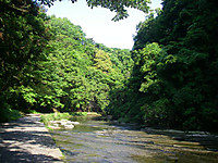 川は右へ曲がり、青空が見え、山肌の緑が輝いていた。