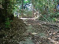 公道に繋がる部分は高さ1メートルほどの竹垣で塞がれていた。