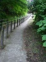 石段の上端から県道までの坂道。コンクリで舗装され、中央にはロープ。
