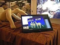 股間からホースの伸びた全裸で横たわるマネキンのそばにあるビデオディスプレイの中ではホワイトゼブラの紹介動画が。