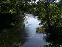 手前から幅数メートルの川が流れだすのを上部の展望台から望む