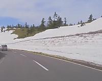 国道脇山側にできた高さ5メートルほどの雪の壁(でもその先には斜面の草地が見えている)
