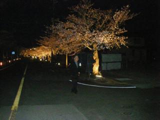 ストロボを焚くと花はかえって暗くなる。樹の前に立つ男性一人。