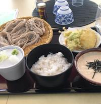 ざるそばと麦とろ飯のセット。小皿で野菜天ぷらが。