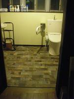 広さ三畳ほどの小部屋の右隅に洋式便座。その脇には可動式の手すり。