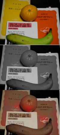 黄色い表紙の岩波新書と赤い表紙の岩波新書を並べ、ミカンと青みがかったバナナを載せて撮影