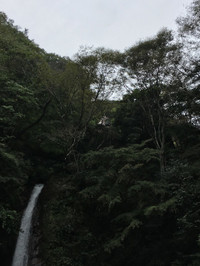 滝壺の途中まで登って見た秩父華厳の滝