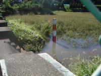 砂川堀調整池の水位