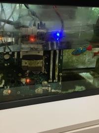 水槽の中に沈む水苔に覆われたコンピュータ基盤