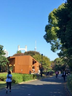 木々の向こうに広がる青空にそびえ立つスカイツリーの先端が見える。